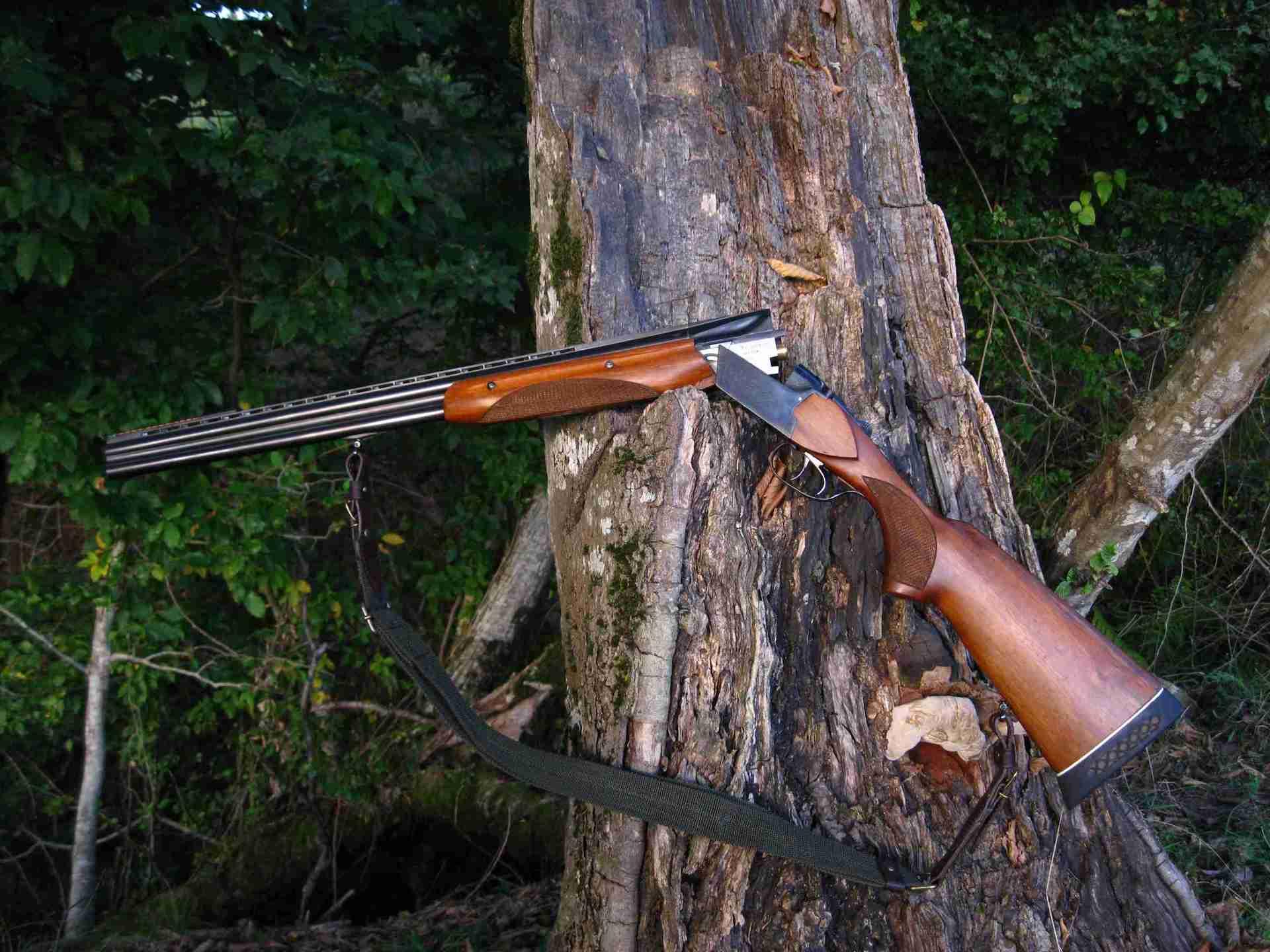 ТОЗ-34 в лесу