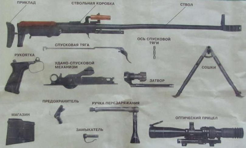 Все детали винтовки Корд