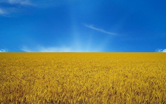 Значение цветов украинского флага