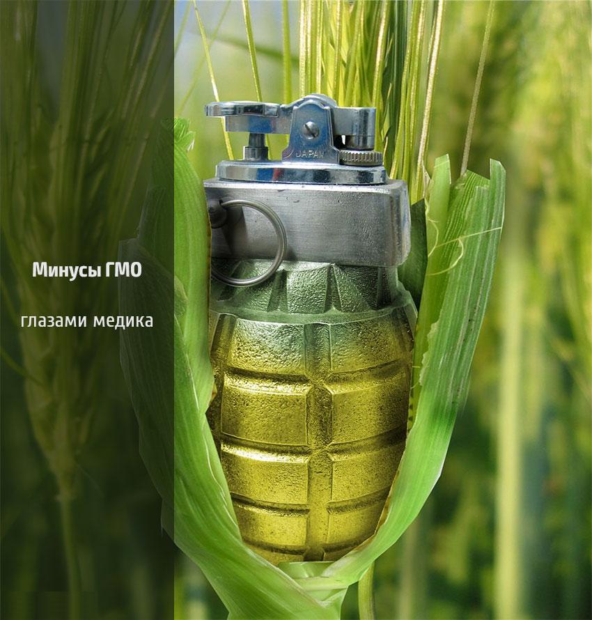Опасность ГМО
