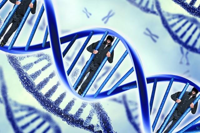 Решетка ДНК