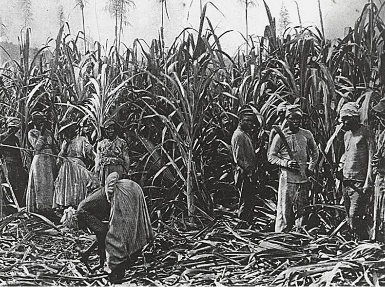 Бразилия в конце XIX века