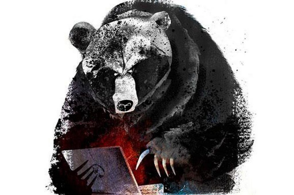 Медведь-хакер