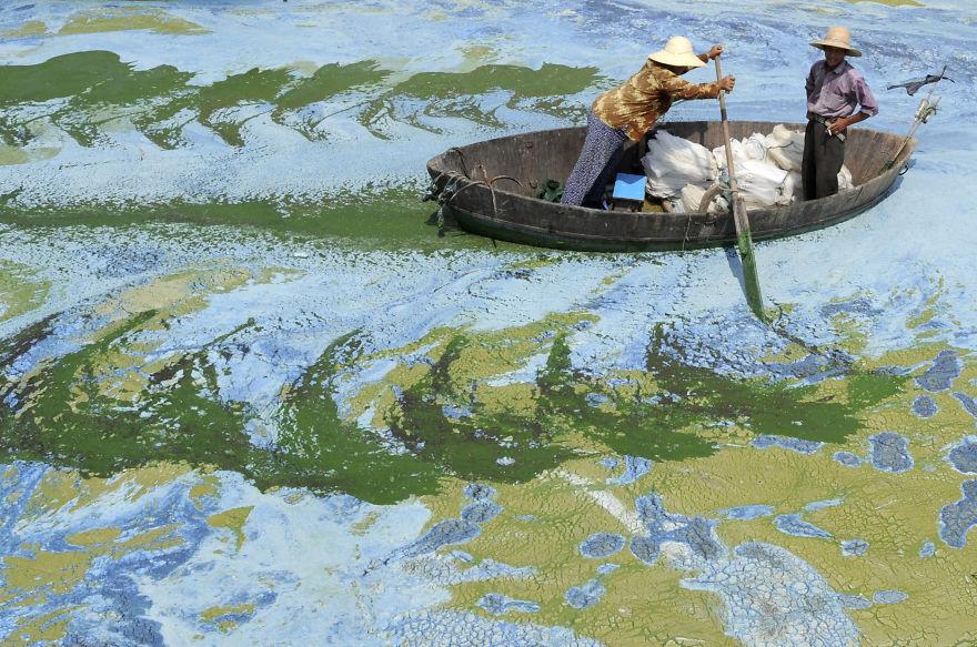 Лодка в грязной воде