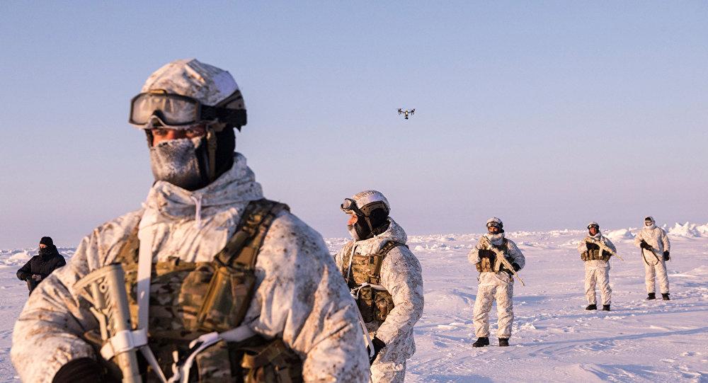 Солдаты НАТО в Арктике