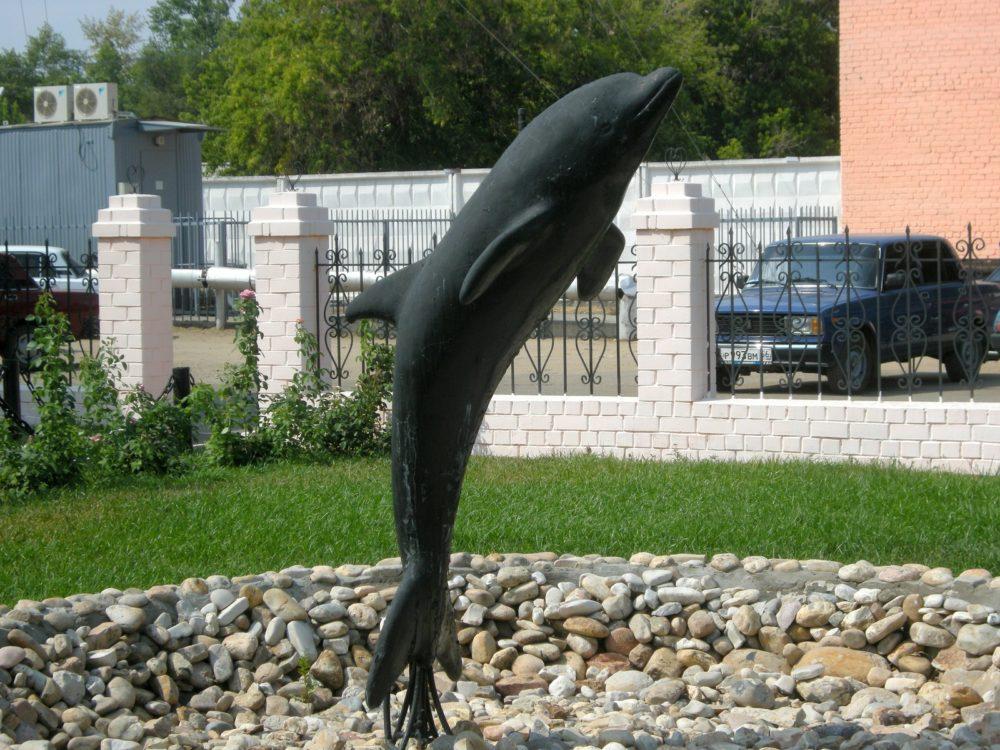 """""""Чёрный дельфин"""""""