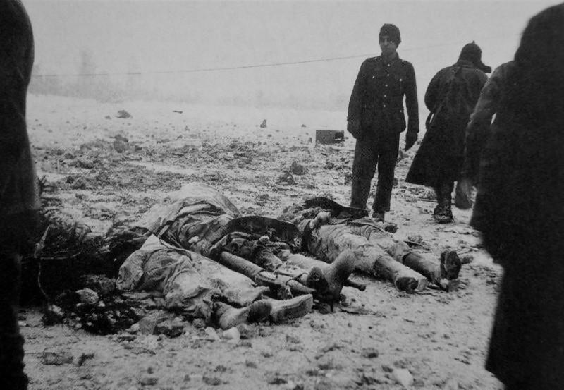 Живые и мертвые немецкие солдаты