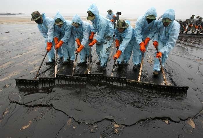 Очистка почвы от нефти