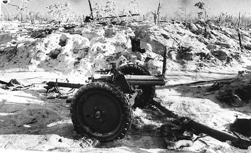 Противотанковая пушка «Бофорс»