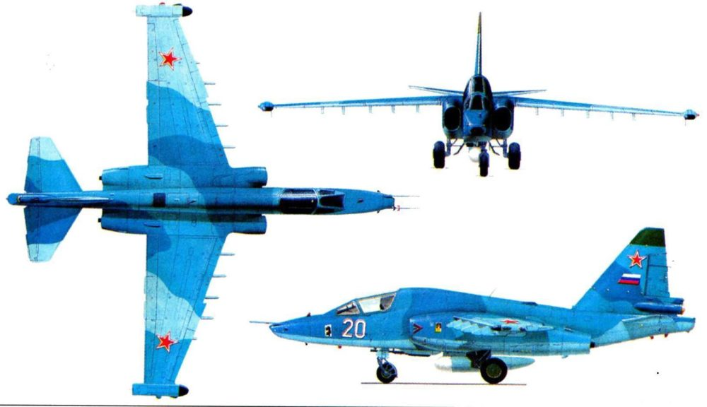 Вид на Су-39